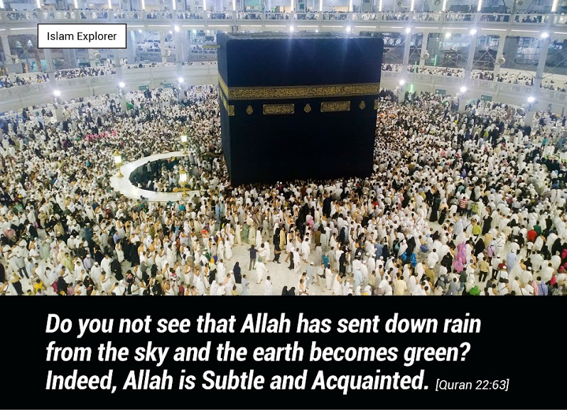 Do you not see that Allah has sent down rain from the sky and the earth becomes green