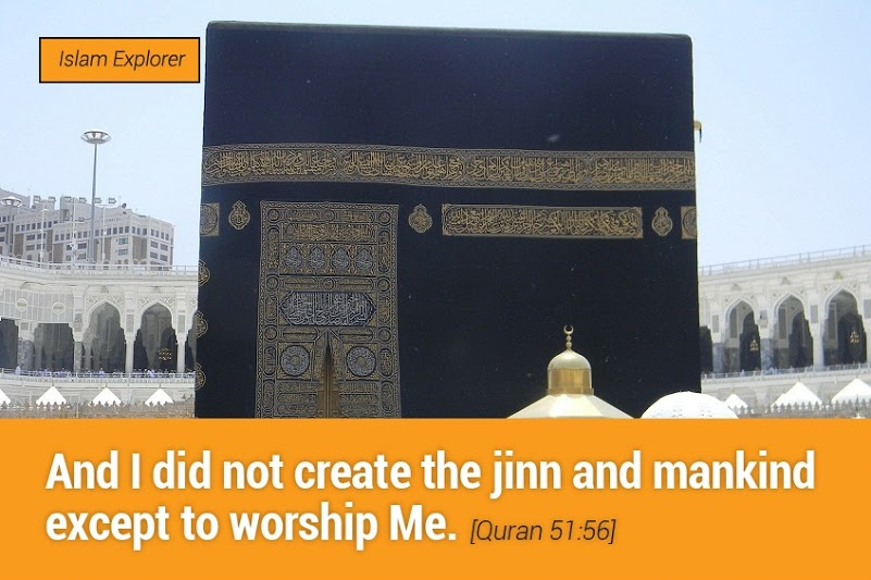 I did not create the jinn and mankind except to worship Me