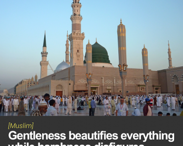 Gentleness beautifies everything