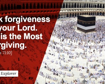 Ask forgiveness of your Lord.