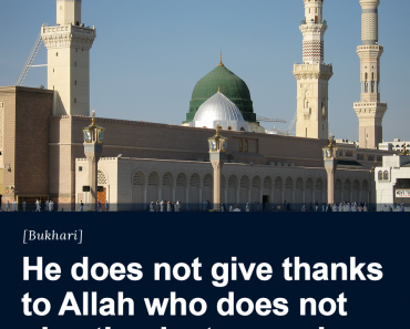 He does not give thanks to Allah
