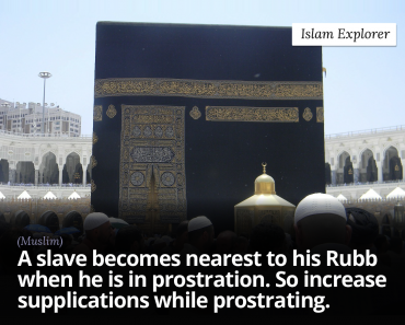 A slave becomes nearest to this Rubb when he is in prostration.