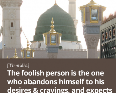 The foolish person is the one who abandons himself to his desires