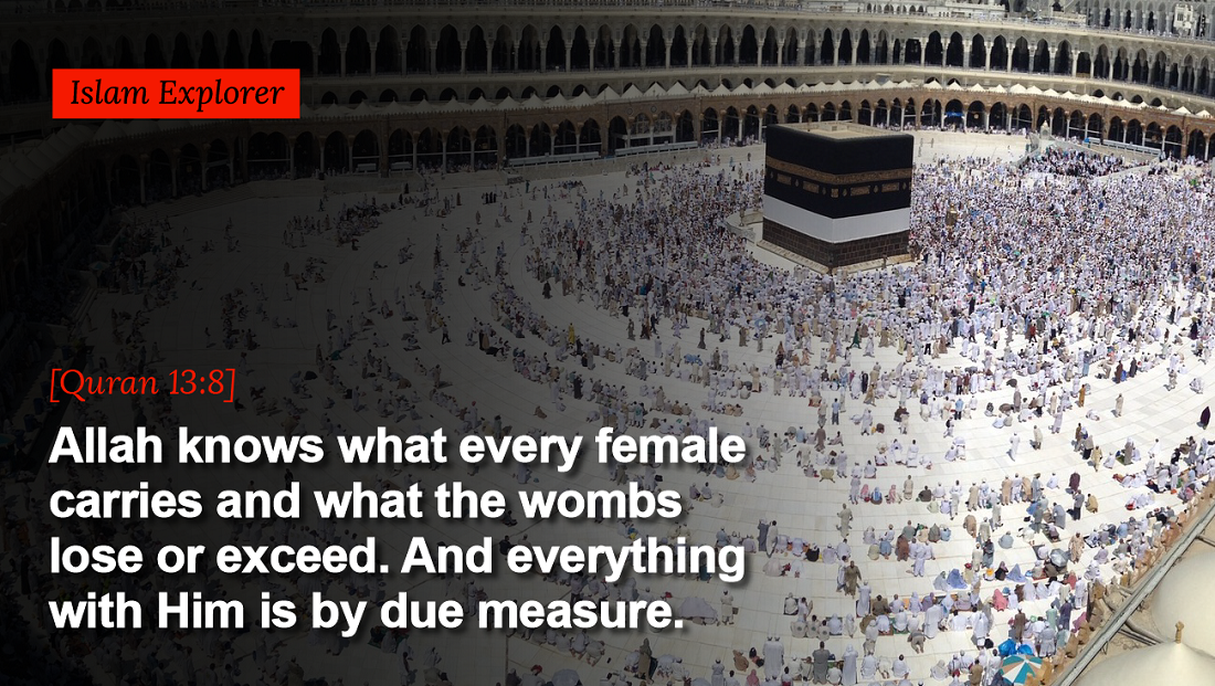 Allah knows what every female carries and what the wombs lose or exceed.