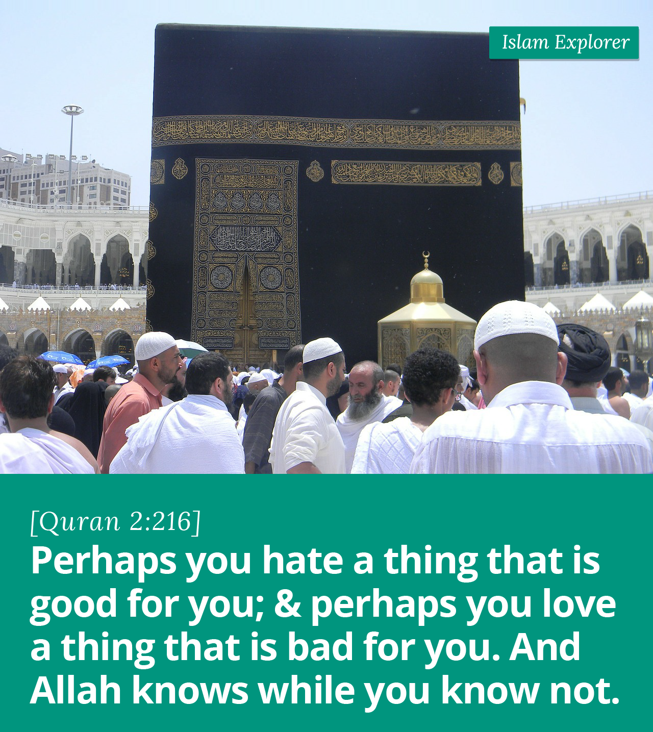 Perhaps you hate a thing that is good for you