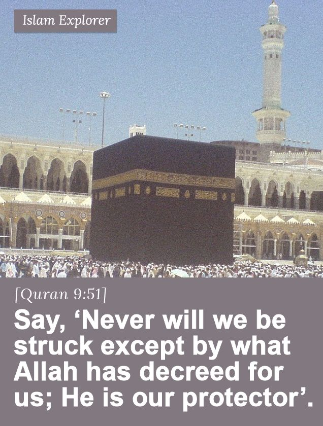 Say, 'Never will we be struck except