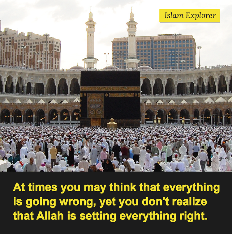 At times you may think that everything is going wrong