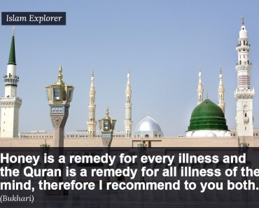 Honey is a remedy for every illness