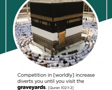 Competition in [worldly] increase diverts you